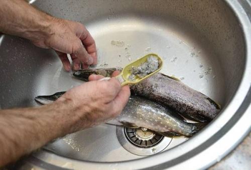 рыбья чешуя - причина засора