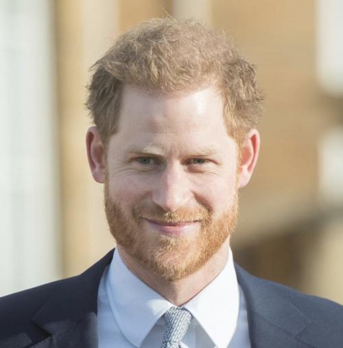 Принц Генри Уэльский (36 лет)
