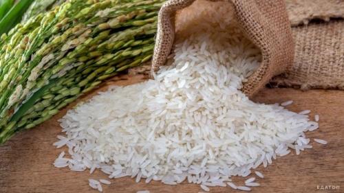 Первый этап – «рисовый»