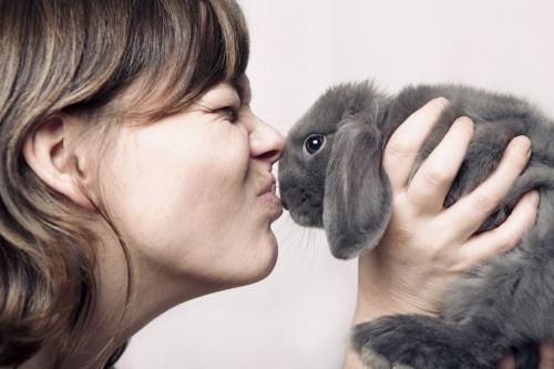 как влюбить в себя Кролика