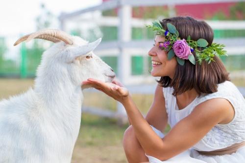 Девушка и Коза